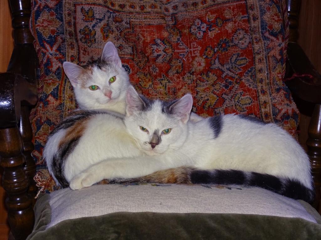 Clara und Theo